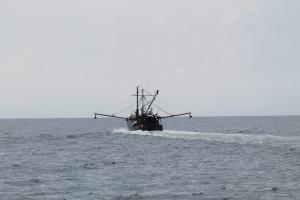 Cruise_FishBoat