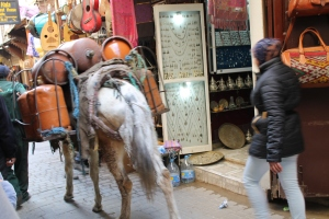 Morocco 040