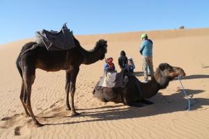 Morocco 141