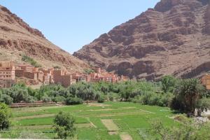Morocco 333