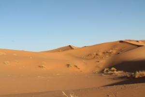 Morocco 352