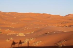 Morocco 370