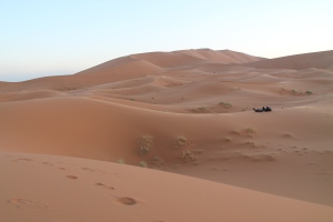 Morocco 447